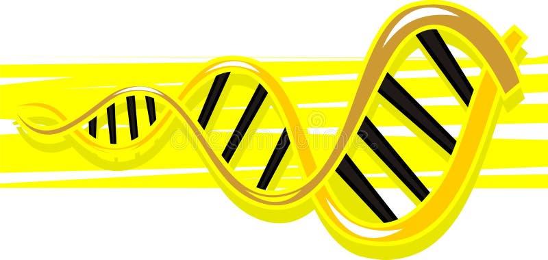 Modèle D ADN Images libres de droits