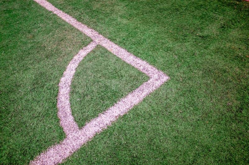 Modèle d'herbe image libre de droits