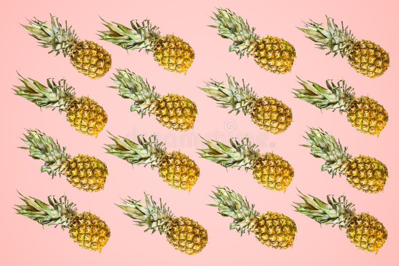 Modèle d'isolement d'ananas sur le fond rouge pâle Été concentré images stock