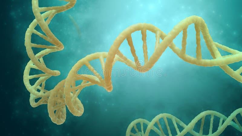 Modèle de brin d'ADN illustration stock