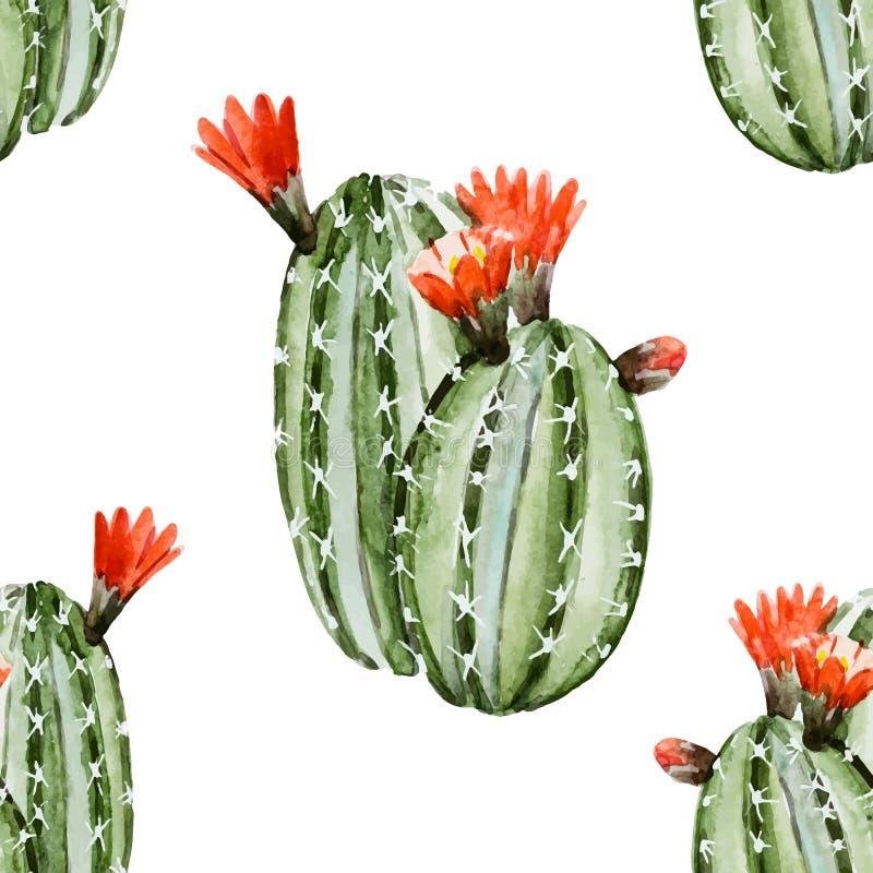 Modèle de cactus d'aquarelle illustration stock