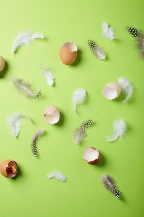 Modèle de coquilles d'oeufs de pâques image libre de droits