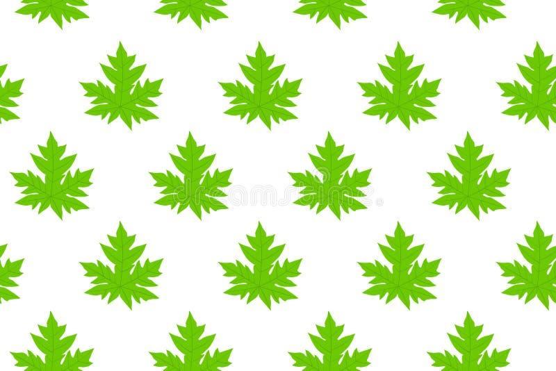 Modèle de feuille de papaye images libres de droits