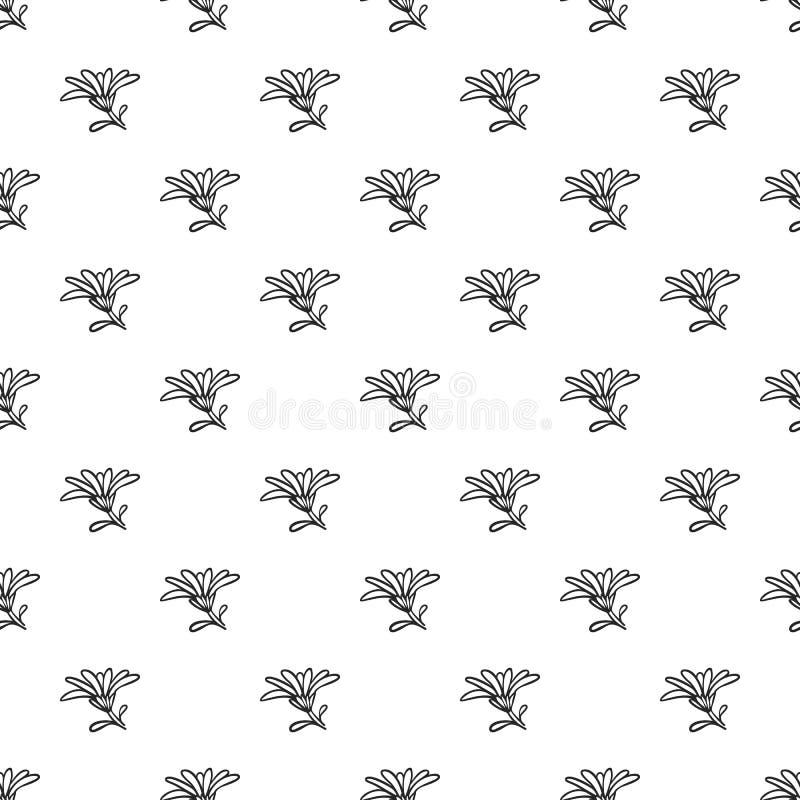 Modèle de fleur de Calendula sans couture illustration stock