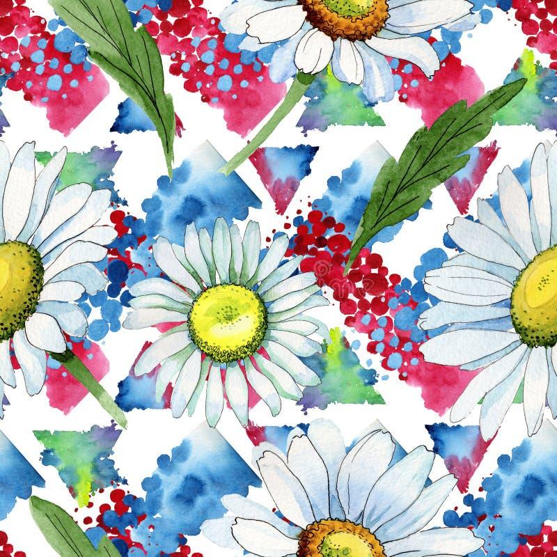 Modèle de fleur de camomille de Wildflower dans un style d'aquarelle illustration de vecteur