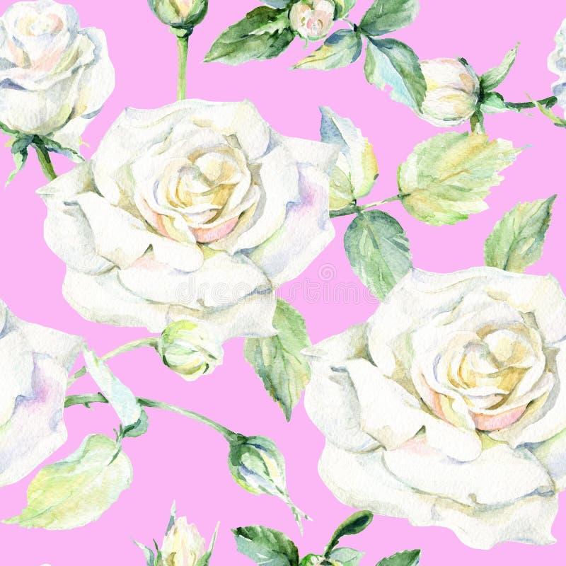 Modèle de fleur rose de Wildflower dans un style d'aquarelle illustration stock