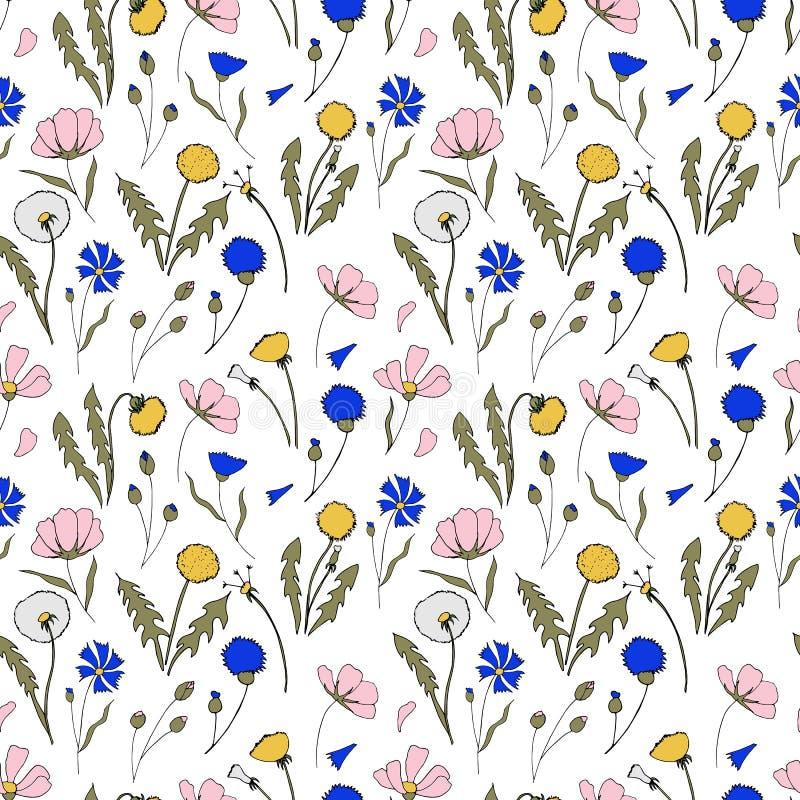 Modèle de fleurs de champ Illustration tirée par la main Illustration lumineuse de bande dessinée pour le design de carte, le tis illustration de vecteur