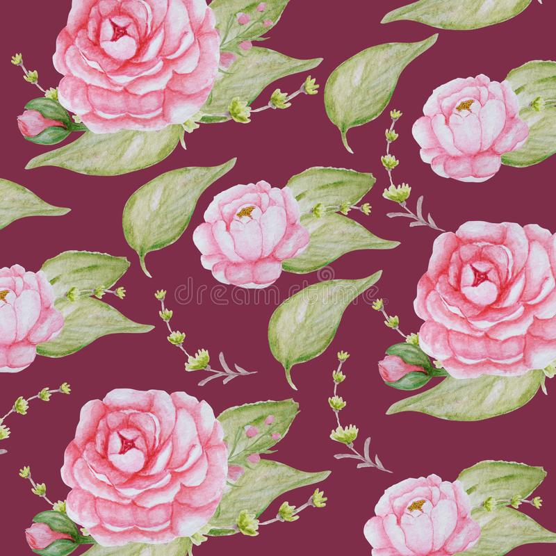 Modèle de fleurs de pivoine d'aquarelle, texture rose de pivoines, papier romantique d'album sur le fond rouge de vigne illustration de vecteur