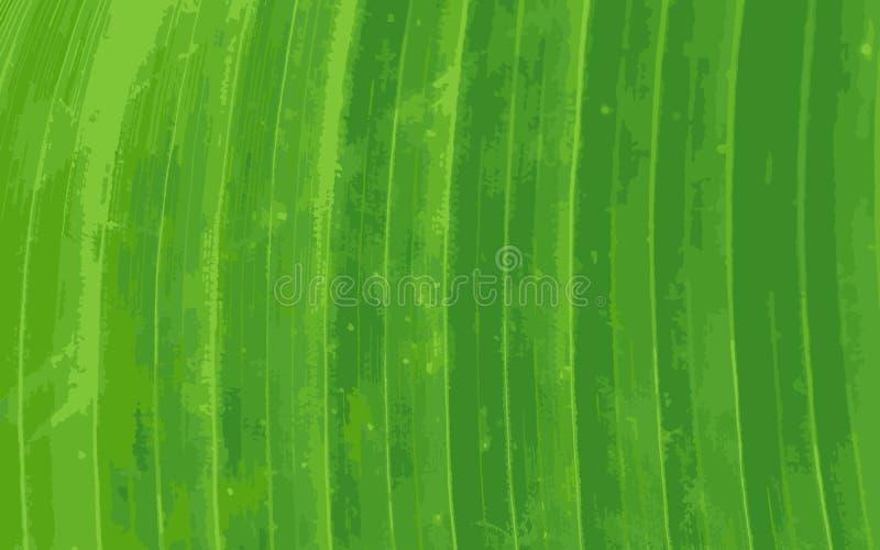 Modèle de fond vert de feuille de banane illustration de vecteur