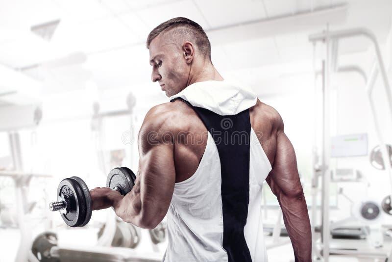 Modèle de forme physique posant les muscles du dos, triceps, latissimus photos stock