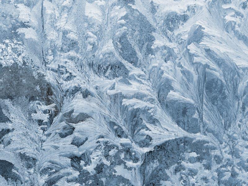 Modèle de Frost, fleurs de glace sur le verre de fenêtre photographie stock libre de droits