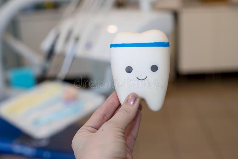Mod?le de jouet de dent avec le visage mignon outil orthodontique de mod?le et de dentiste - mod?le de dents de d?monstration des photographie stock libre de droits