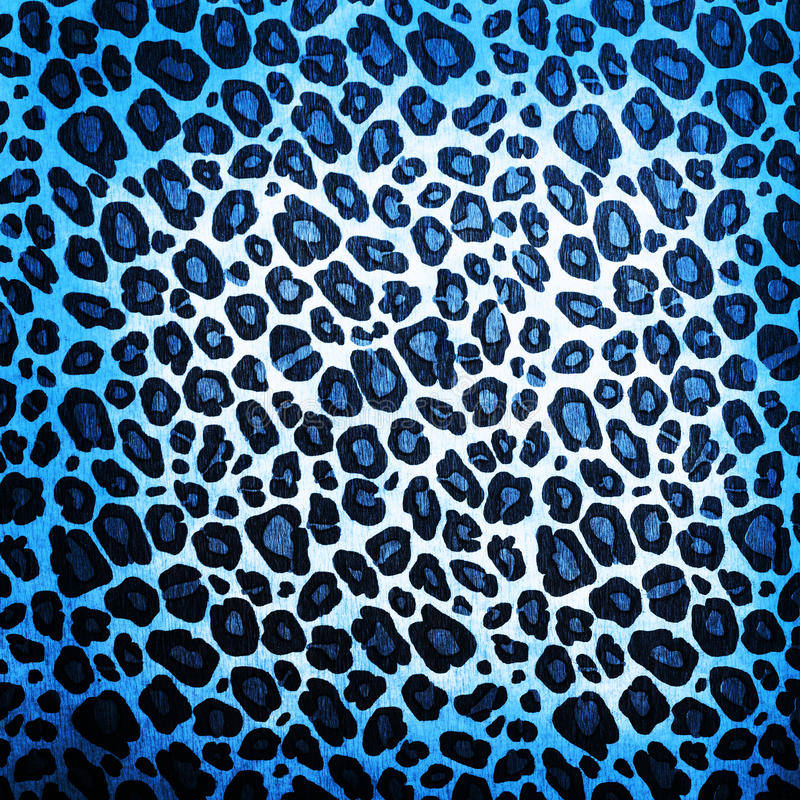 Modèle de léopard photographie stock libre de droits