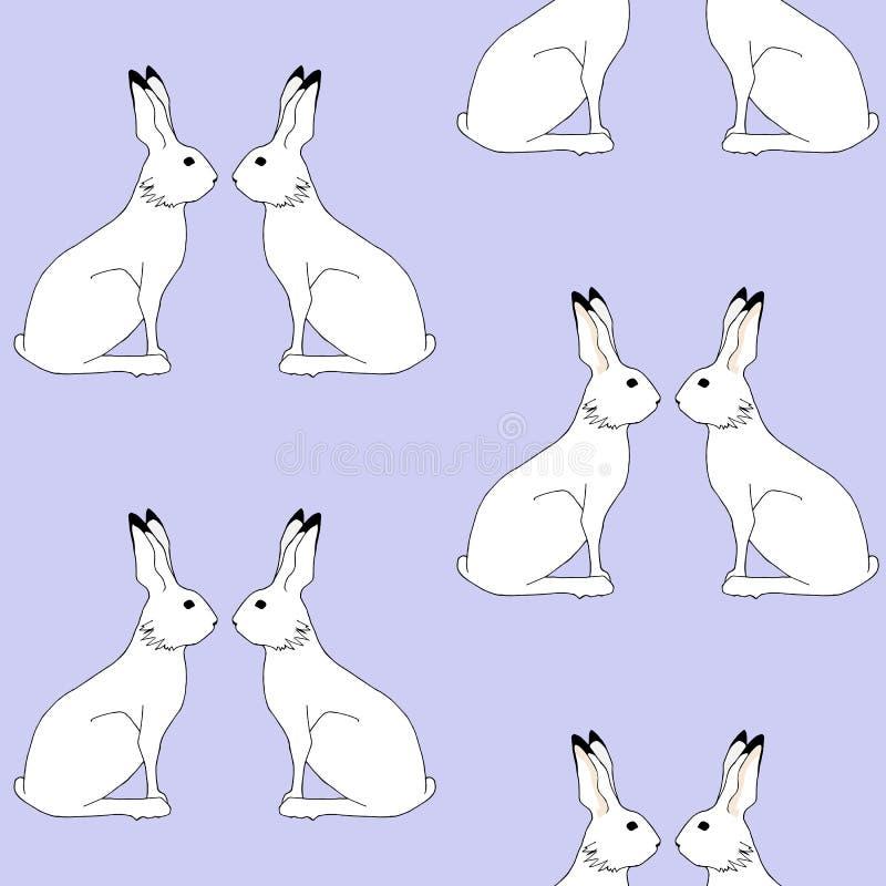 Modèle de lapin photo stock