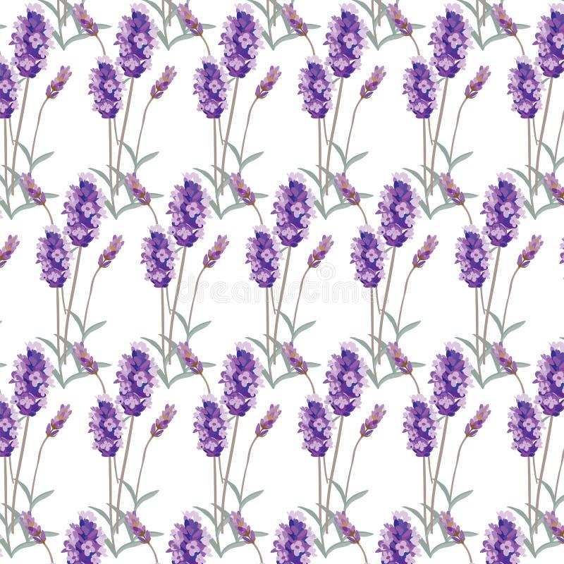 Modèle de lavande avec des fleurs en peinture d'aquarelle illustration stock