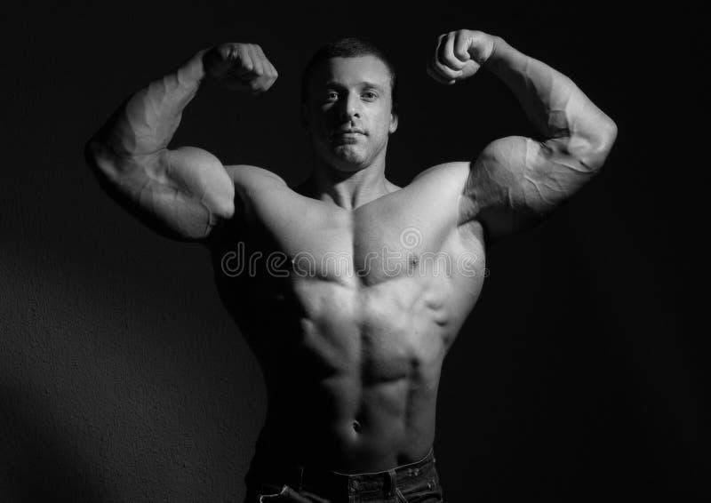 Modèle de mâle de muscle photographie stock libre de droits