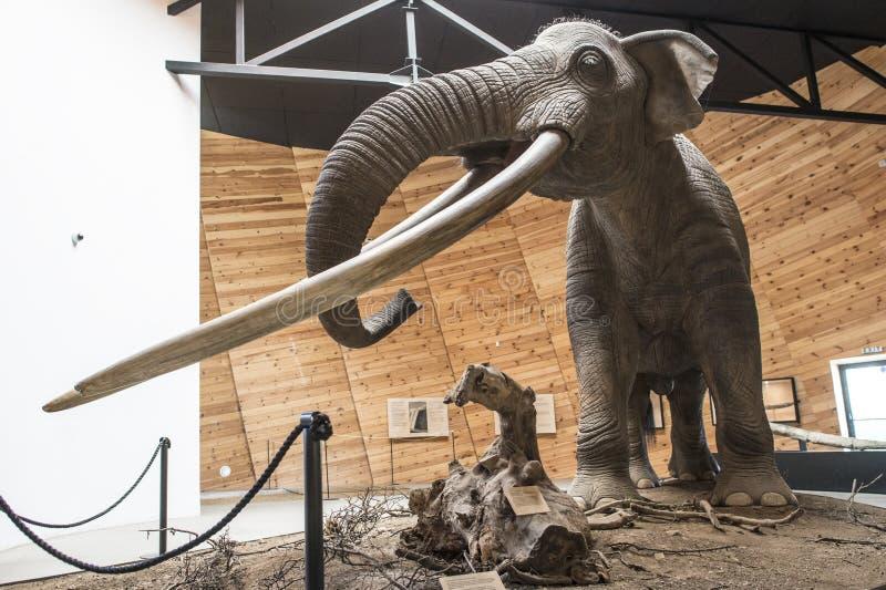 Modèle de mastodonte photos stock