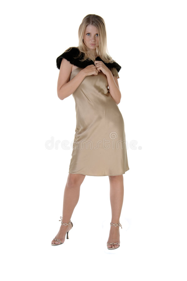 Modèle de mode en or image stock