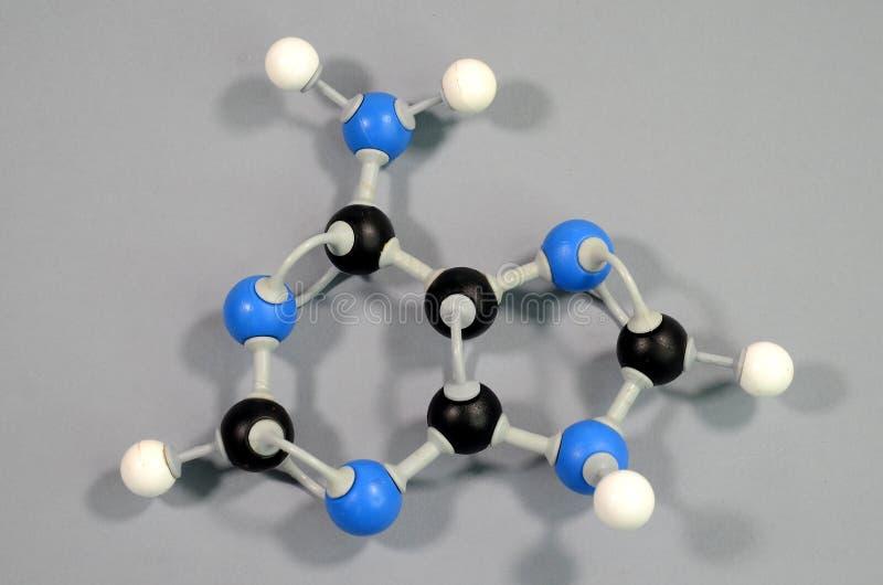 Modèle de molécule de l'adénine d'élément d'ADN images libres de droits