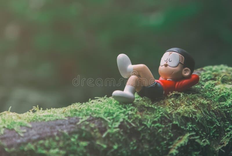 Modèle de Nobita au parc national de Doi Inthanon image libre de droits