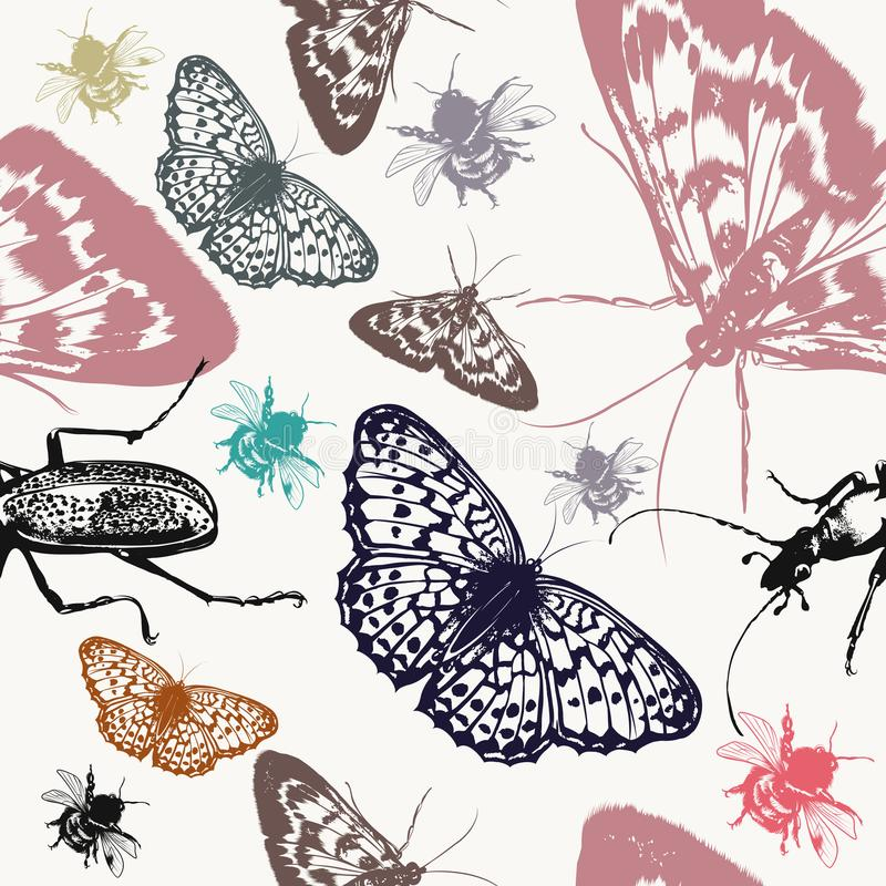 Modèle de papier peint de vecteur avec les insectes détaillés illustration de vecteur