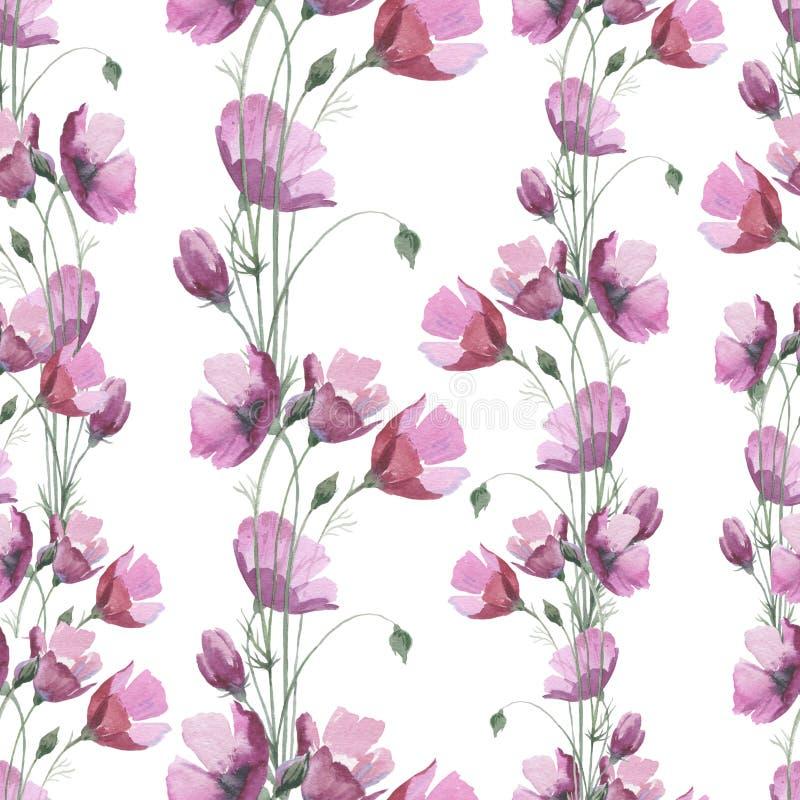 Modèle de pavot de fleur de Wildflower dans un style d'aquarelle illustration stock