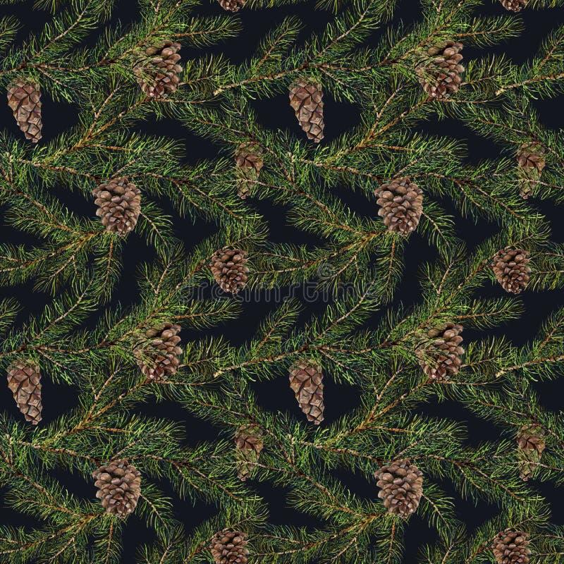 Modèle de pin d'aquarelle Branche peinte à la main de sapin avec le pin illustration stock