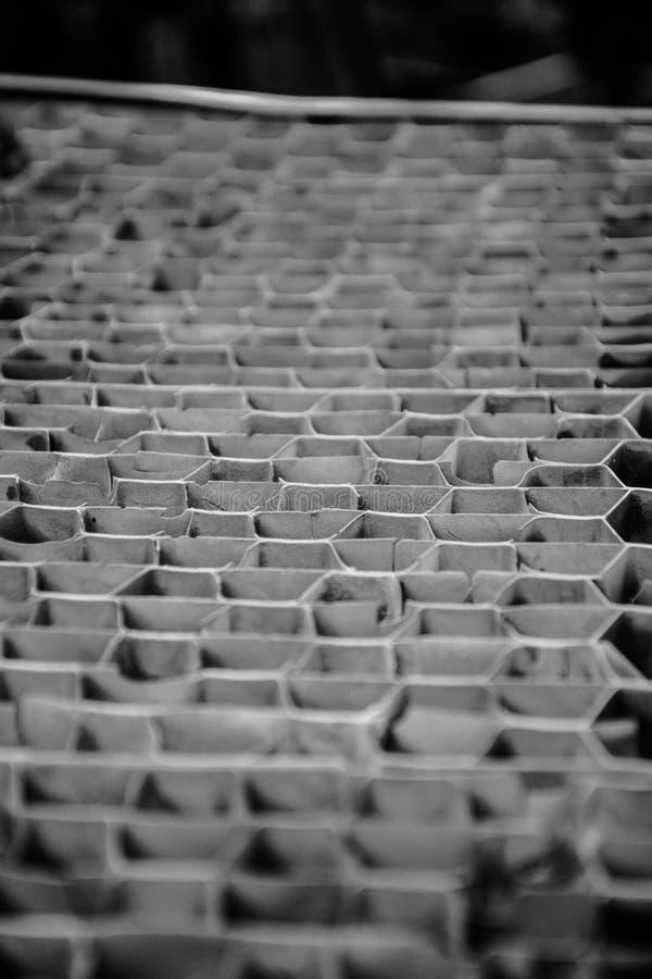 Modèle de répétition monochrome de nid d'abeilles de fond photographie stock libre de droits