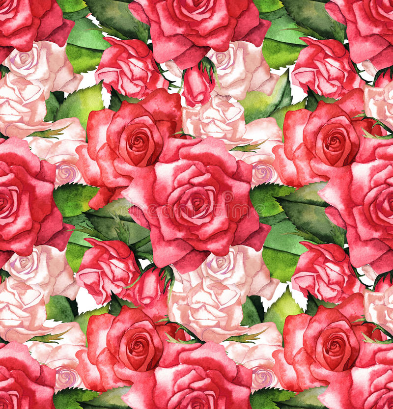 Modèle de roses rouges d'aquarelle illustration de vecteur
