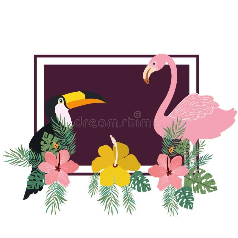 Modèle de tucan et de Flamand avec des fleurs d'été illustration de vecteur