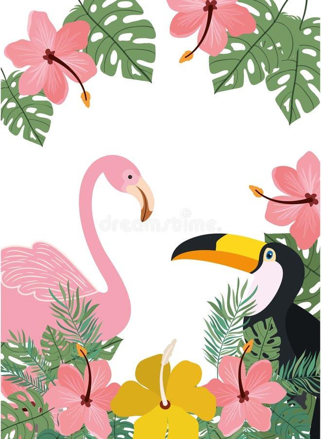 Modèle de tucan et de Flamand avec des fleurs d'été illustration libre de droits