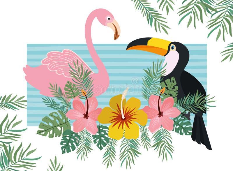 Modèle de tucan et de Flamand avec des fleurs d'été illustration stock