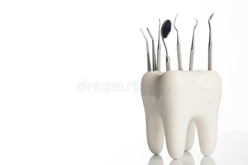 Modèle dentaire de dent avec l'équipement médical d'art dentaire en métal photos libres de droits