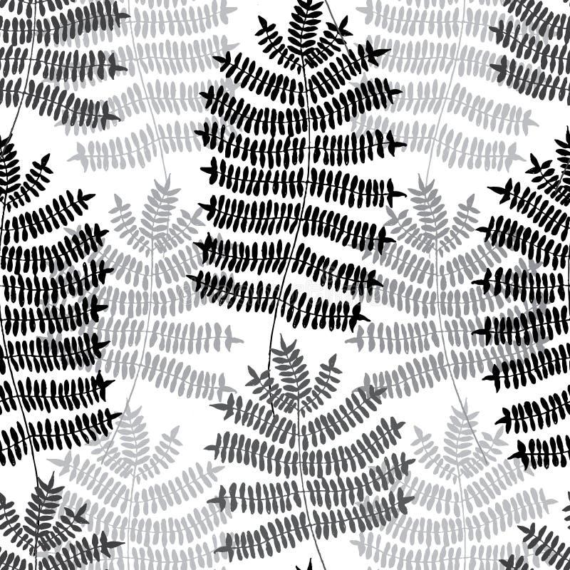 Modèle dessiné par non-et de motif de fougère Modèle sans couture de forêt verte Fond de vecteur illustration stock