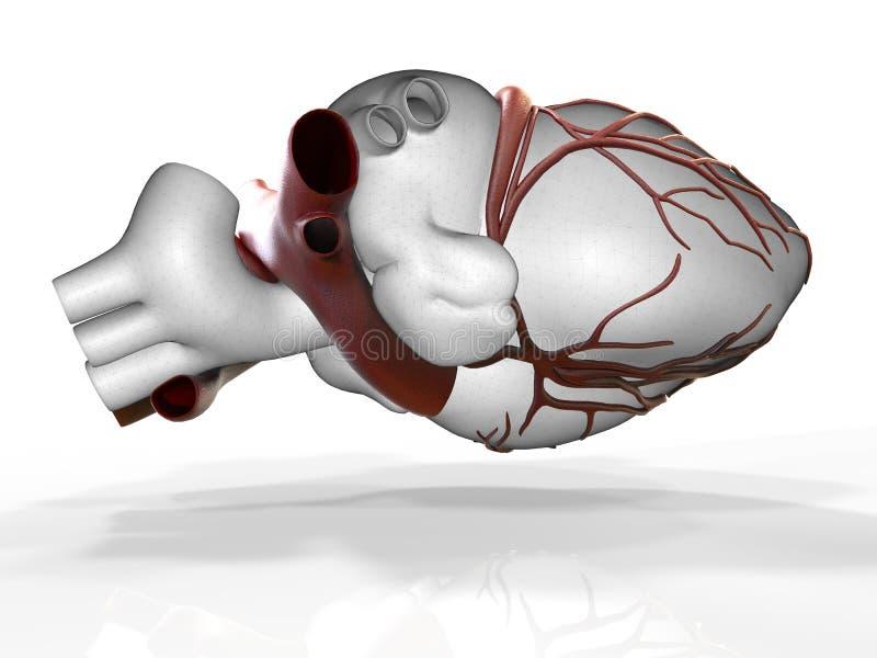 Download Modèle Du Rendu Humain Artificiel Du Coeur 3d Illustration Stock - Illustration du interne, médecine: 76075902