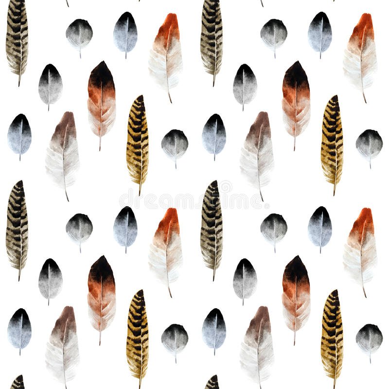 Modèle du ` s de plume d'aquarelle illustration stock