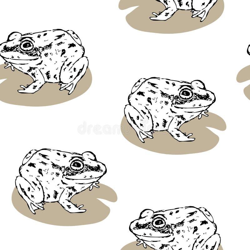 Modèle esquissé de grenouilles illustration stock
