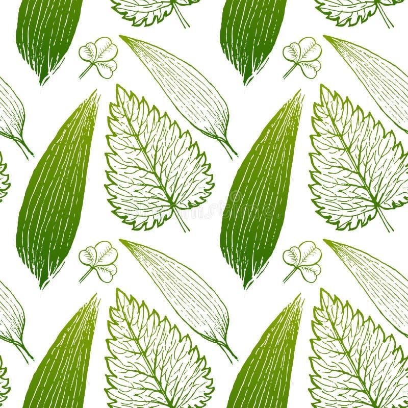 Modèle exotique sans couture avec les feuilles tropicales sur un fond blanc illustration libre de droits