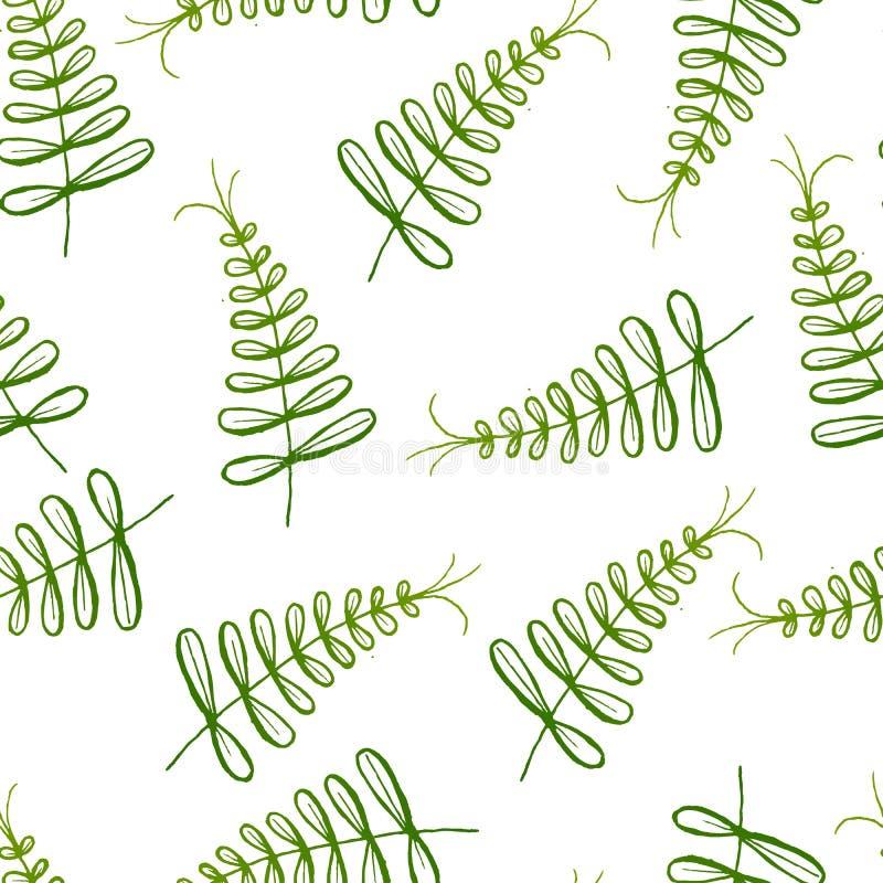 Modèle exotique sans couture avec les feuilles tropicales sur un fond blanc illustration stock