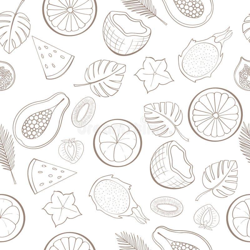 Modèle exotique sans couture de fruit illustration stock