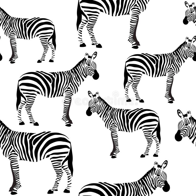 Modèle extérieur sans couture de zèbre, fond noir et blanc de zèbres pour la conception de textile, impression de tissu, stationn photos libres de droits