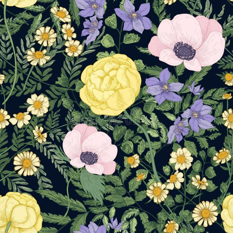 Modèle floral élégant avec les fleurs de floraison sauvages et les plantes fleurissantes sur le fond noir Beau contexte avec illustration de vecteur