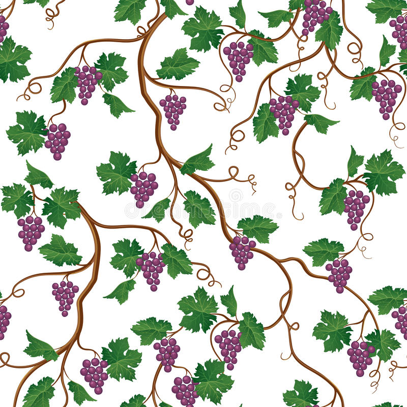 Modèle floral avec la branche de raisin Papier peint sans couture de Wineyard G illustration de vecteur