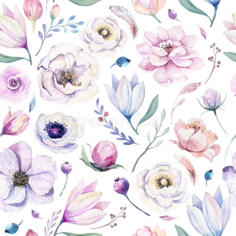 Modèle floral d'aquarelle lilic sans couture de ressort sur un fond blanc Fleurs roses et roses, décoration de weddind illustration libre de droits