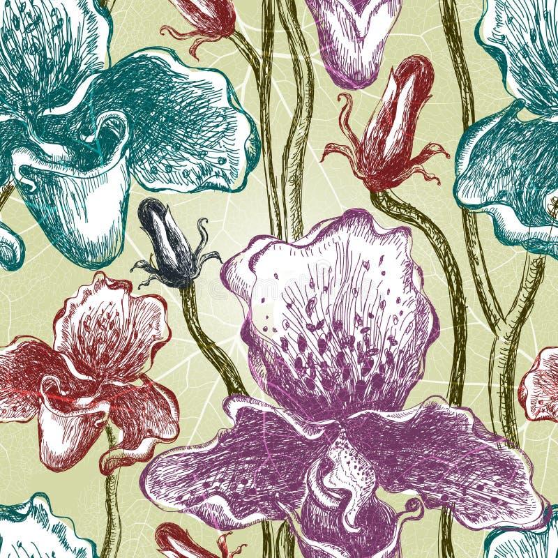 Modèle floral d'orchidée sans couture. Vecteur, EPS10 illustration stock