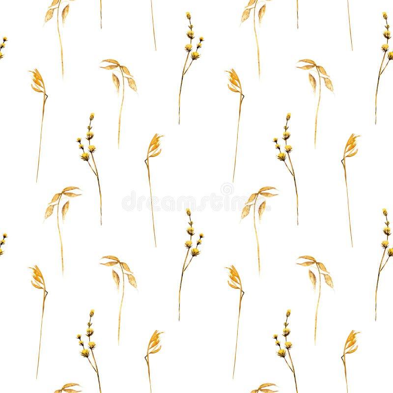 Modèle floral sans couture avec les épillets de blé et toute autre herbe sèche illustration stock