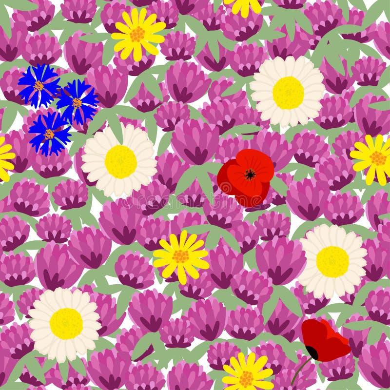 Modèle floral sans couture coloré, champ de floraison d'été illustration de vecteur