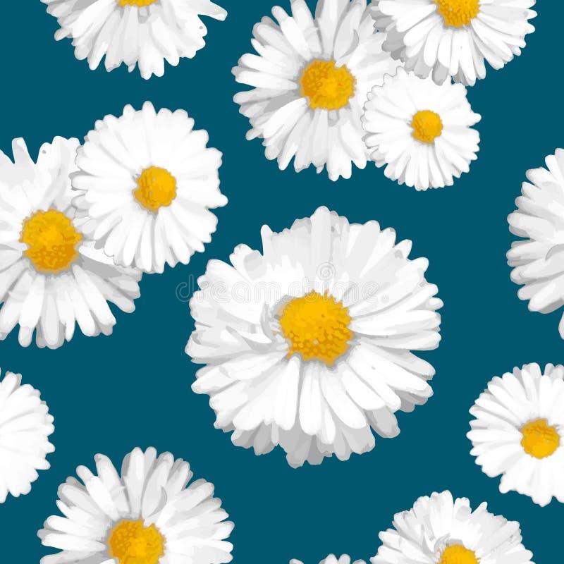 Modèle floral sans couture de vecteur avec les marguerites blanches sur le fond de bleu marine Fleurs dans le style réaliste illustration libre de droits