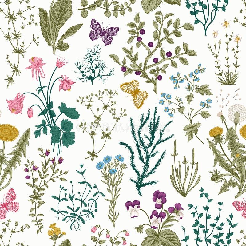 Modèle floral sans couture de vintage de vecteur illustration de vecteur