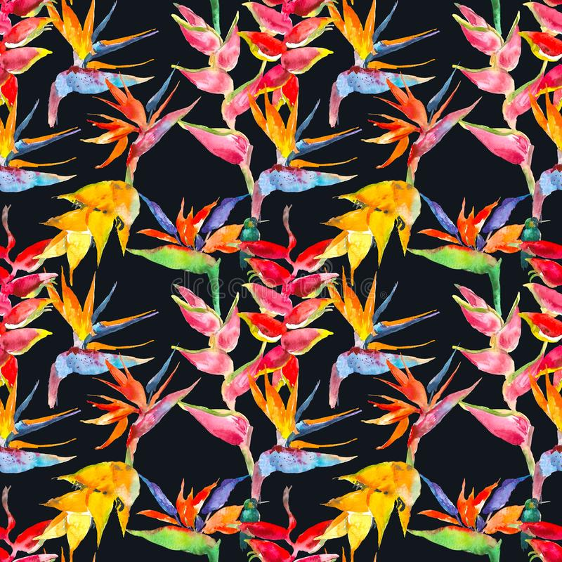 Modèle floral simple à la mode Fleurs de calathea, strelitzia Copie tropicale de jungle Répétition du fond pour le textile photographie stock libre de droits